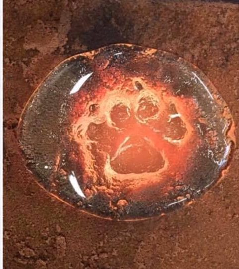 Paw Casting in glass